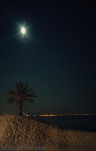 Måneskinn